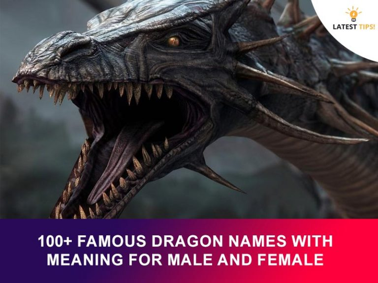 100+ Famous Dragon Names With Meaning For Male And Female 2021