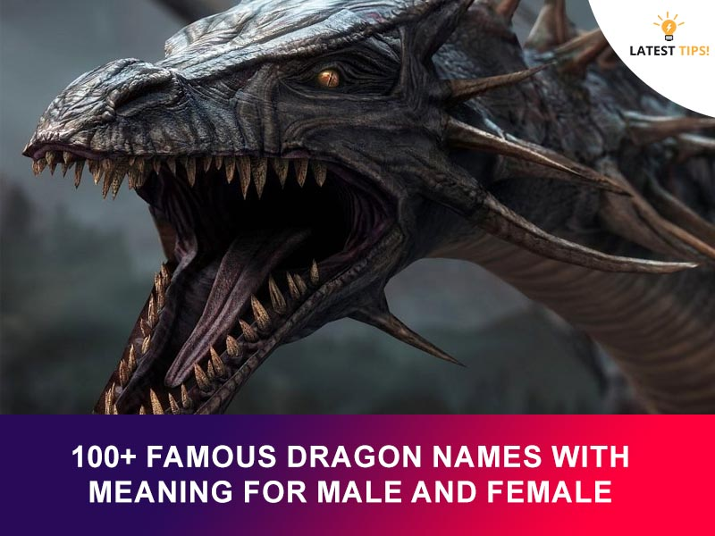 Famous Dragon Names With Meaning For Male And Female